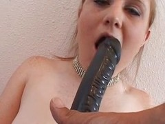 Hawt pet drilled in the botheration