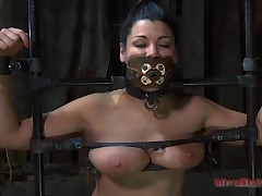 Girl acquires their way bawdy cleft pleasured while inside a cage