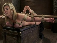 Large tittied Sara Jay receives toyed plus harrowing with a mousetrap