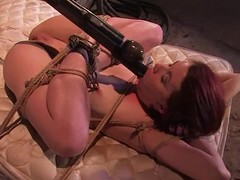 Breasty unreserved receives hogtied, suspended, twitched and bondaged